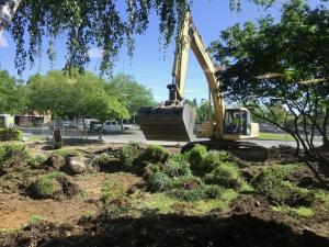 07-2-20_landscaping